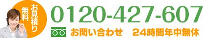 0120-427-607